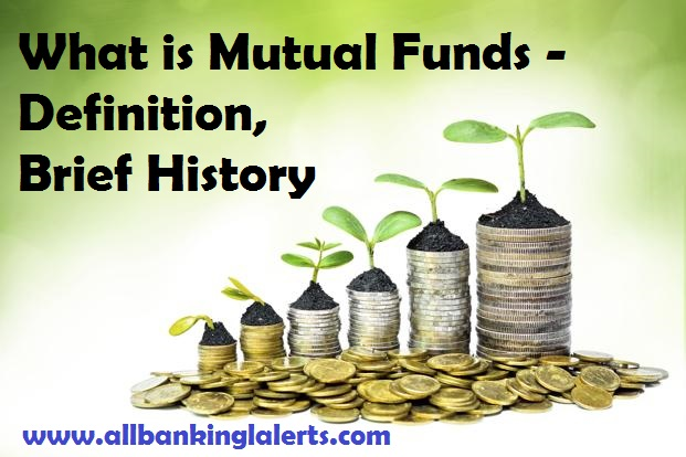 Mutual Funds Definitiion Types of MFs Schemes