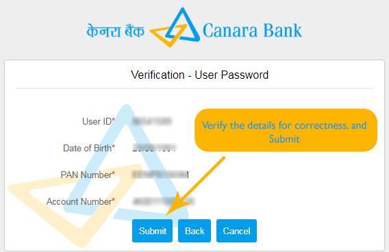 Verify Details for Correctness